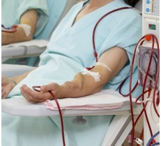 hemodialisis